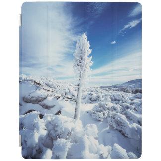 California, Anza Borrego Desert State Park 2 iPad Cover