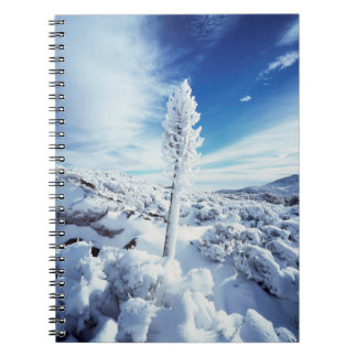 California, Anza Borrego Desert State Park 2 Spiral Notebook