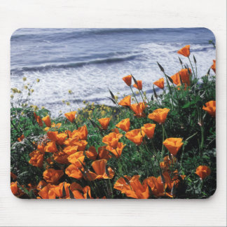 California, Big Sur Coast, California Poppy Mouse Mat