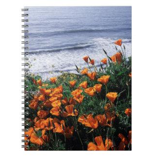 California, Big Sur Coast, California Poppy Notebook
