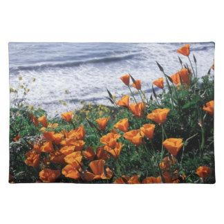 California, Big Sur Coast, California Poppy Placemat