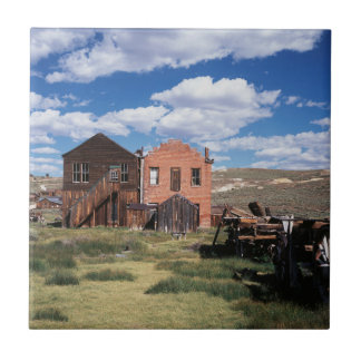 California, Bodie State Historic Park, An old Small Square Tile