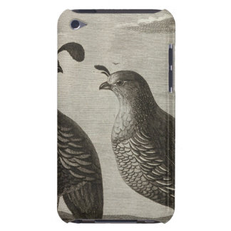California Barely There iPod Cases
