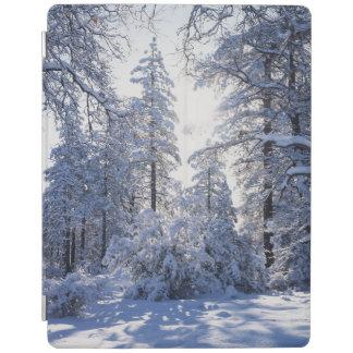 California, Cleveland National Forest, Laguna 1 iPad Cover
