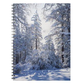 California, Cleveland National Forest, Laguna 1 Spiral Notebook