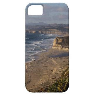 California Coast Case