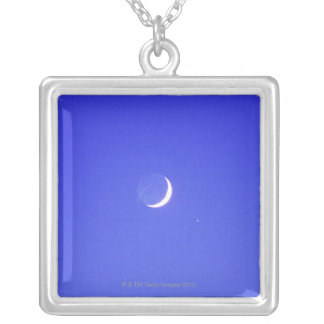 California coast, USA Silver Plated Necklace