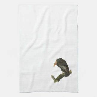 California Condor by Audubon Tea Towel