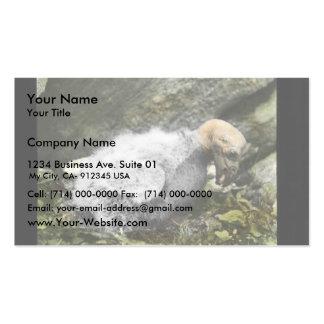 California condor chick business card templates