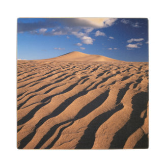 California, Dumont Dunes in the Mojave Desert Wood Coaster