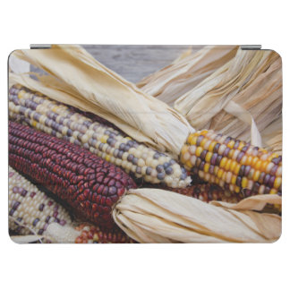 California. Fall Harvest Colorful Indian Corn iPad Air Cover