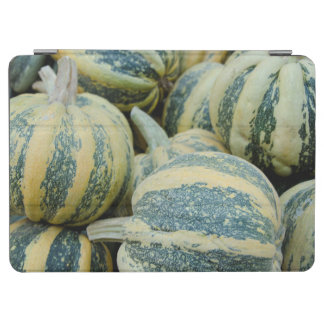 California. Fall Harvest In California iPad Air Cover