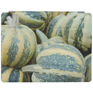 California. Fall Harvest In California iPad Cover