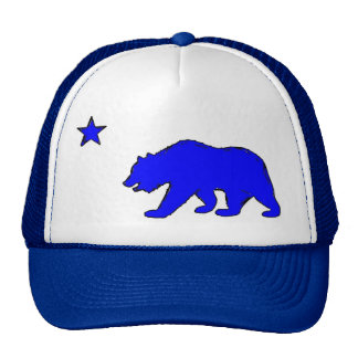 California flag neon blue bear hat