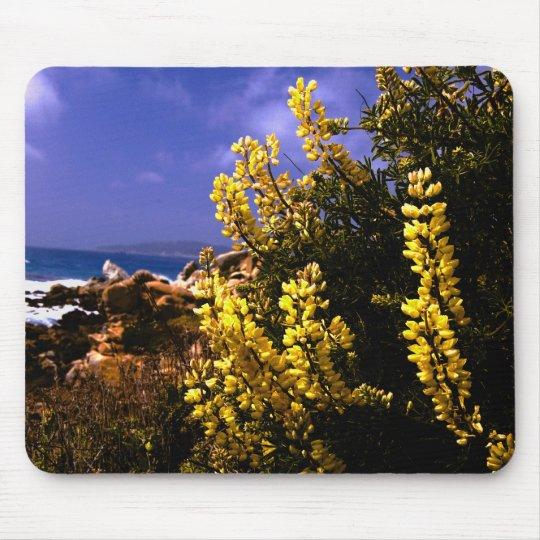 California Floral Coast Mousepad