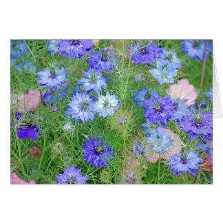 California Flower Garden Greeting Card