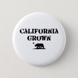 California Grown Bear 6 Cm Round Badge