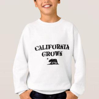 California Grown Bear Sweatshirt