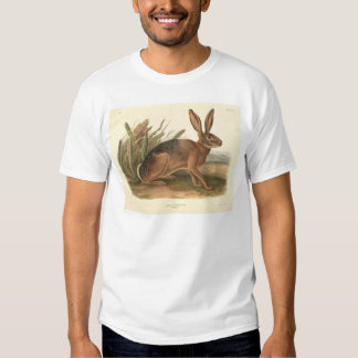 California Hare by Audubon (0177A) T-shirts