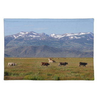 California HWY 395 Landscape Placemat