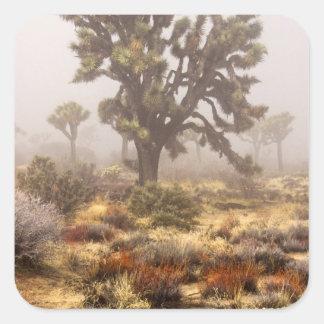 California: Joshua Tree National Monument, Square Sticker