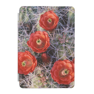 California, Joshua Tree National Park, Claret iPad Mini Cover