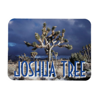 California, Joshua Tree National Park Rectangular Photo Magnet