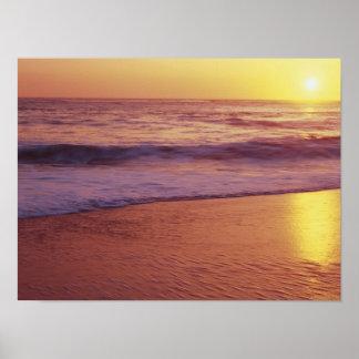 California, near Santa Cruz, View of beach at Poster
