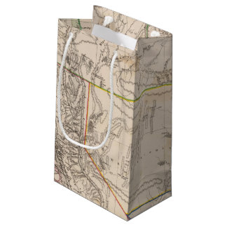 California, Oregan, Utah, New Mexico Small Gift Bag