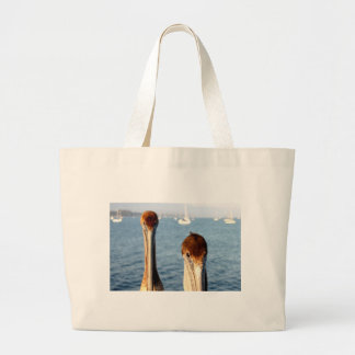 California Pelicans Tote Bags