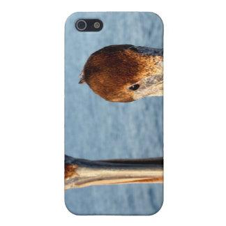 California Pelicans iPhone 5 Cover