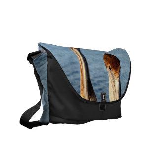 California Pelicans Courier Bags