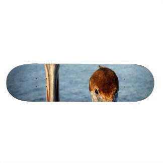 California Pelicans Skateboards