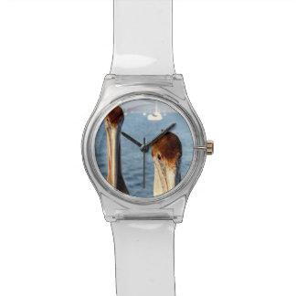 California Pelicans Wrist Watches