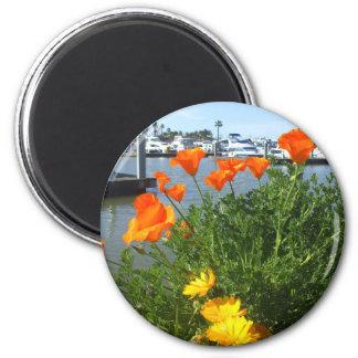 California poppies 6 cm round magnet