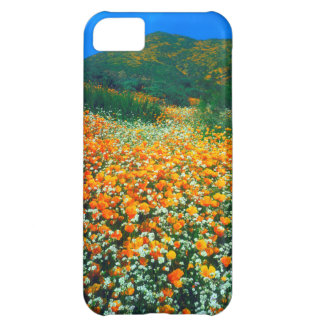 California Poppies and Popcorn wildflowers iPhone 5C Case