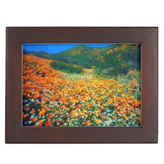 California Poppies and Popcorn wildflowers Keepsake Boxes