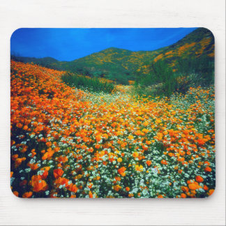 California Poppies and Popcorn wildflowers Mouse Mat
