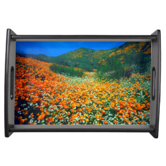 California Poppies and Popcorn wildflowers Serving Tray