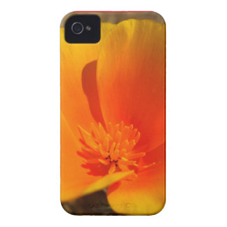 California Poppies BlackBerry Bold Barely There™ iPhone 4 Case