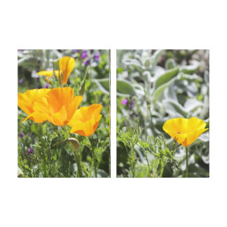 California Poppies Canvas Triptych Art Canvas Print