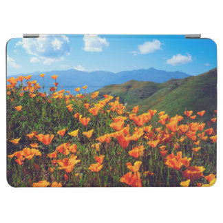 California poppies covering a hillside iPad air cover