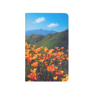 California poppies covering a hillside journal