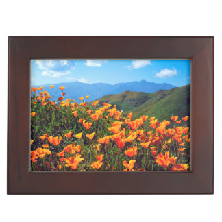 California poppies covering a hillside keepsake box