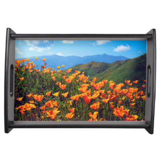 California poppies covering a hillside serving tray