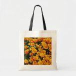 California poppies in bloom, Lancaster, California Canvas Bag