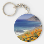 California Poppies landscape Basic Round Button Key Ring