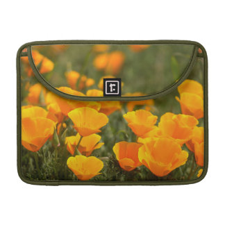 California poppies, Montana de Oro State Park Sleeve For MacBooks