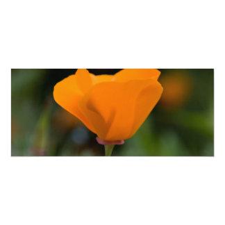 California Poppy 10 Cm X 24 Cm Invitation Card