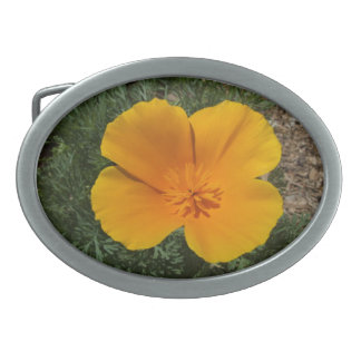 California poppy belt buckle